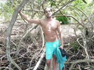 manglares por colombia, isla del rosario - cocoliso